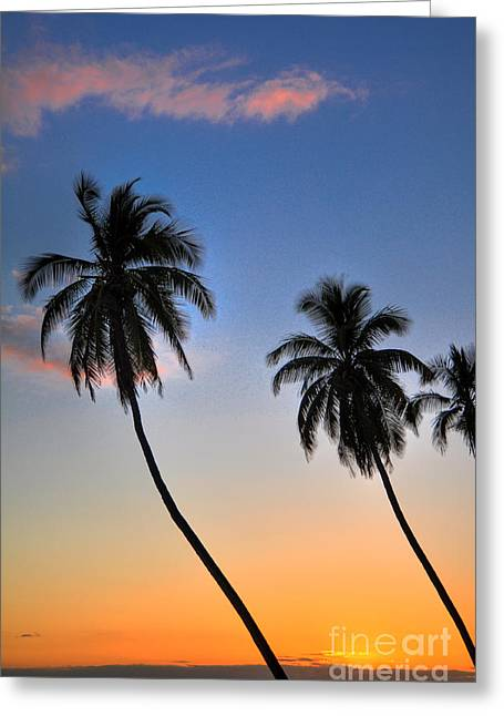 Tropical Photographs Greeting Cards - Lahaina Palms Greeting Card by Kelly Wade
