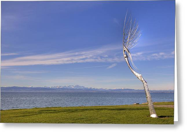 Lake Constance Greeting Cards - Lake Constace Friedrichshafen Greeting Card by Joana Kruse