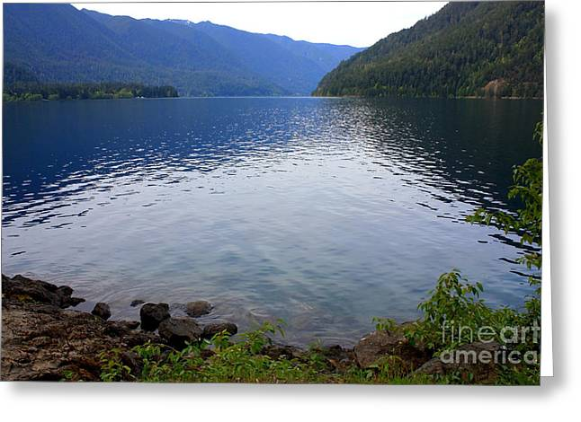 Pnw Greeting Cards - Lake Crescent - Digital Painting Greeting Card by Carol Groenen