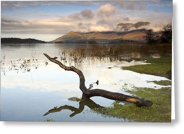 Ocean Front Landscape Greeting Cards - Lake Derwent, Cumbria, England Greeting Card by John Short