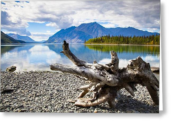 Lake Kathleen In Kluane National Park Greeting Card by Blake Kent