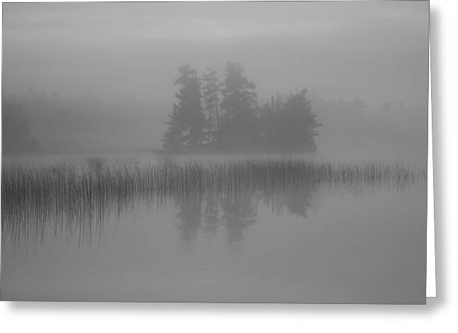 Reflection Of Trees In The Forest Greeting Cards - Lake Of The Woods, Ontario, Canada Mist Greeting Card by Keith Levit