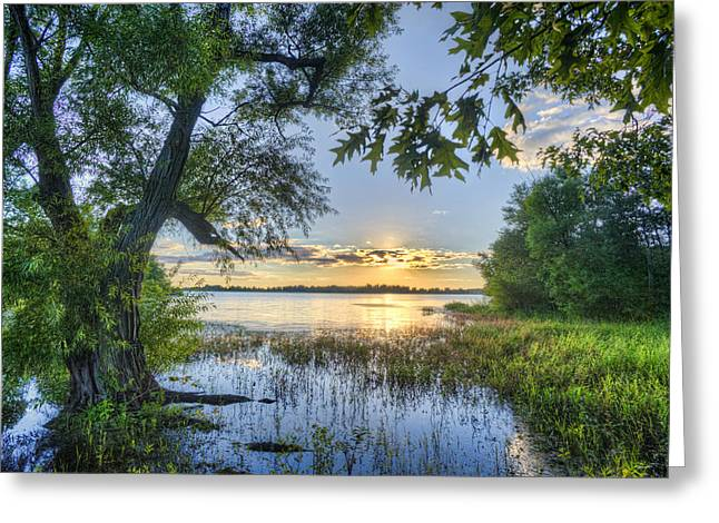 Tree Reflection At Sunset Greeting Cards - Lake Peewee at Sunset Greeting Card by Jim Pearson
