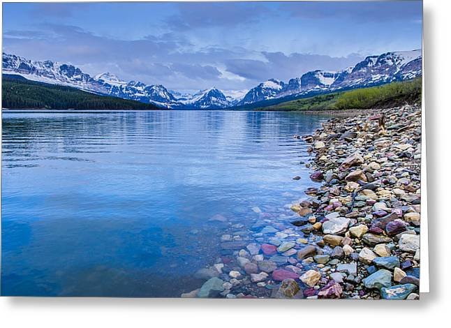 Lake Sherburne Shoreline Greeting Card by Greg Nyquist