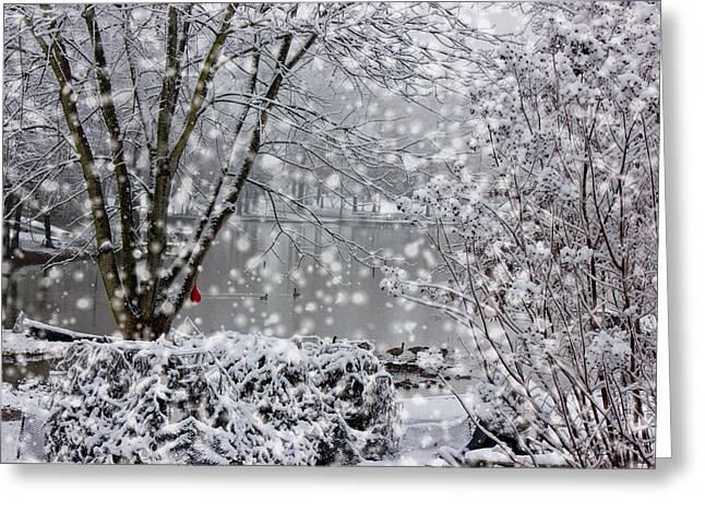 Mood Art Giclee Greeting Cards - Lake Snowfall Greeting Card by Barry Jones