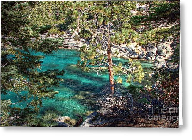 Swimming Hole Greeting Cards - Lake Tahoe Swimming Hole Greeting Card by Scott McGuire