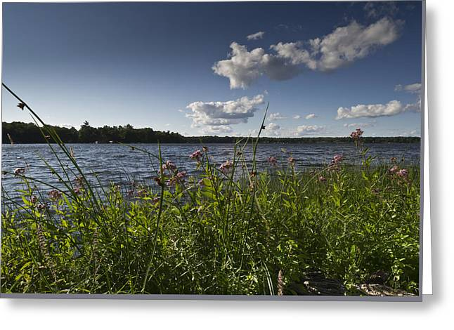 Camelot Greeting Cards - Lake view Greeting Card by Gary Eason