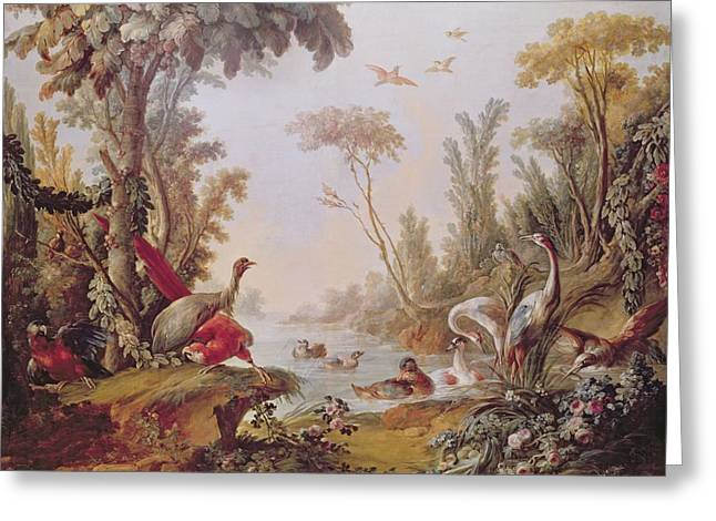 Francois Boucher Greeting Cards - Lake with geese storks parrots and herons Greeting Card by Francois Boucher