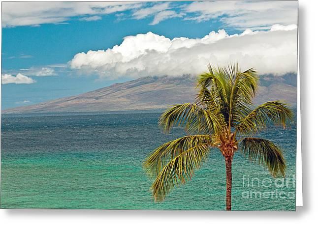 Niihau Hawaii Greeting Cards - Lanai Greeting Card by Jim Chamberlain