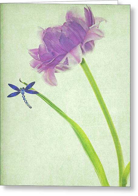 Dragonflies Greeting Cards - Landing Greeting Card by Rebecca Cozart