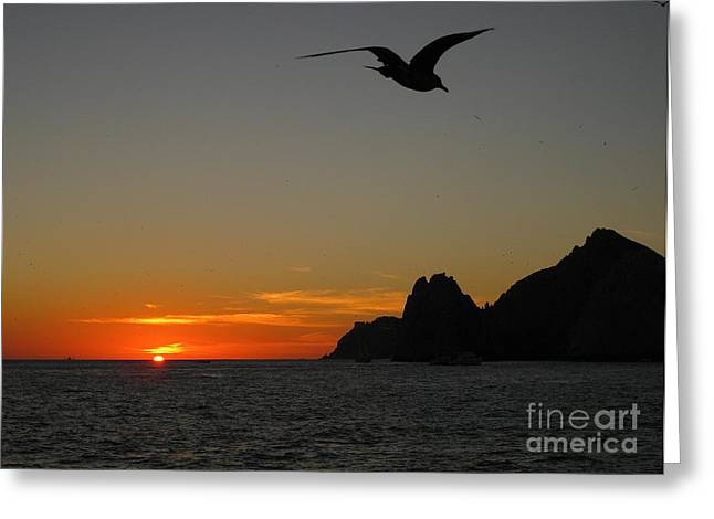 Orange Sky Greeting Cards - Lands End Sunset Greeting Card by Judee Stalmack