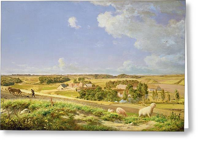 Farmers Field Greeting Cards - Landscape  Greeting Card by Johann Moller