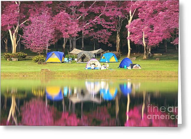 Reflex Greeting Cards - Landscape of pink garden Greeting Card by Anek Suwannaphoom