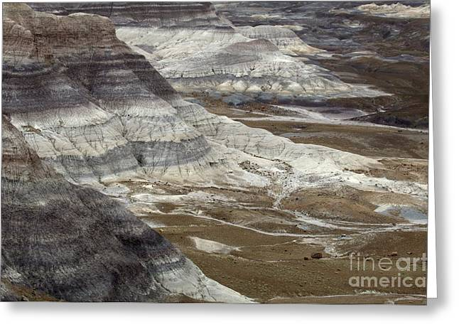 Petrified Forest National Park Greeting Cards - Landscape Petrified Forest Greeting Card by Bob Christopher
