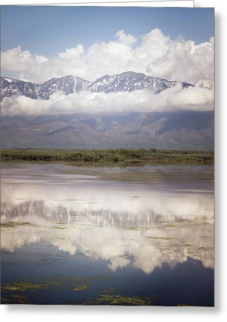 Snow Capped Greeting Cards - Landscape Reflected In Water Greeting Card by Matt Brandon