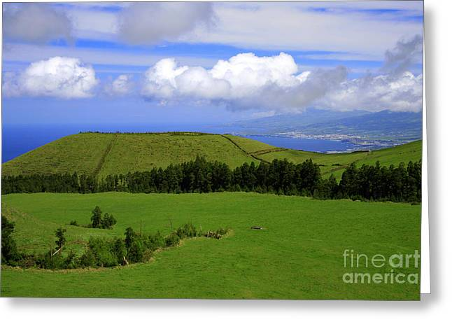 Lush Colors Greeting Cards - Landscape with crater Greeting Card by Gaspar Avila