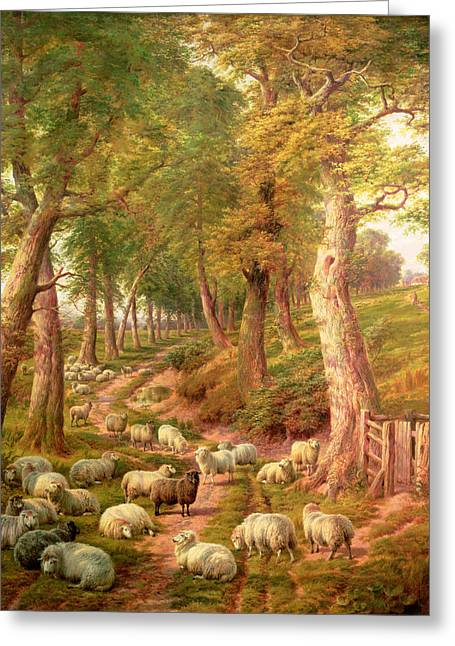 Best Sellers -  - Farmers Field Greeting Cards - Landscape with Sheep Greeting Card by Charles Joseph