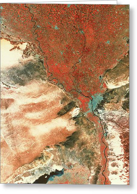 Urbanisation Greeting Cards - Landstat Photo Of Cairo & Nile Delta Greeting Card by Mda Information Systems