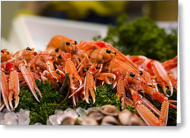 Monger Greeting Cards - Langoustines at the Market Greeting Card by Heather Applegate