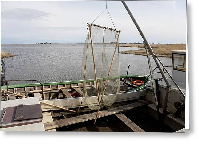 Unloading Greeting Cards - Lao Marina Is On The West Baltic Coast Greeting Card by Jaak Nilson