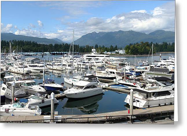 Large marina in Vancouver BC Canada. Greeting Card by Gino Rigucci