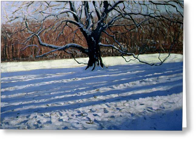 Derbyshire Greeting Cards - Large Tree Greeting Card by Andrew Macara