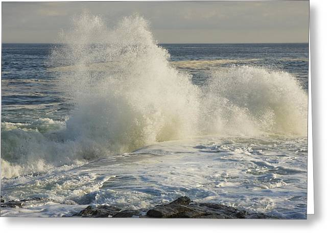 Maine Shore Greeting Cards - Large Waves On Rocky The Coast Maine Greeting Card by Keith Webber Jr
