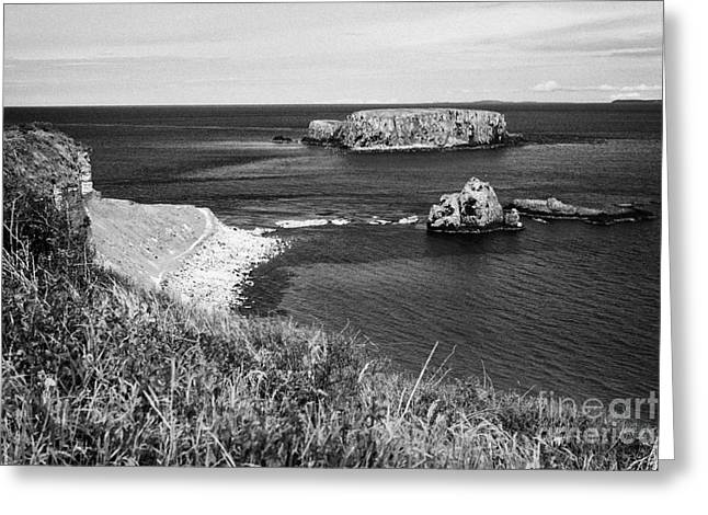 Coastal Route Greeting Cards - Larrybane Head And Sheep Island On The North Antrim Coast With Views Of The Scottish Isles To The No Greeting Card by Joe Fox