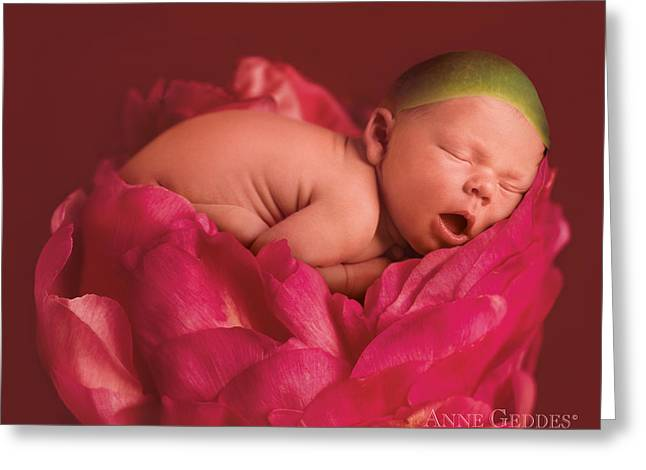 Pink Flower Greeting Cards - Lars in Peony Greeting Card by Anne Geddes