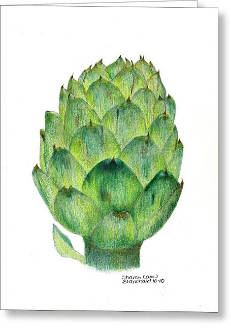 Culinary Drawings Greeting Cards - lartichaut The Artichoke Greeting Card by Sharon Blanchard