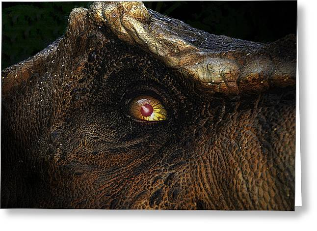 Dinosaurs Greeting Cards - Last day of the Jurassic Greeting Card by David Lee Thompson