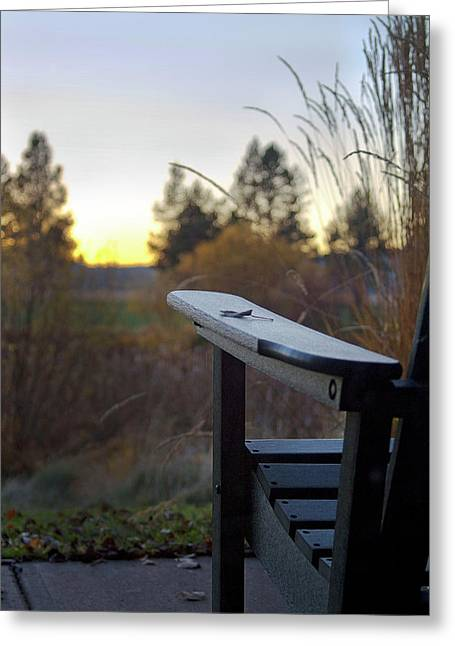 Sunriver Greeting Cards - Last Glow Greeting Card by Rebecca Cozart
