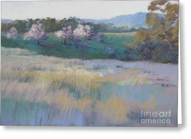 Spring Pastels Greeting Cards - Last Light Greeting Card by Pamela Pretty