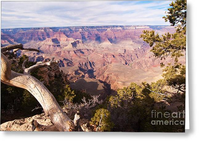 Late Afternoon At The South Rim Greeting Card by Bob and Nancy Kendrick