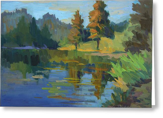 Late Afternoon Light At Harry's Pond Greeting Card by Diane McClary