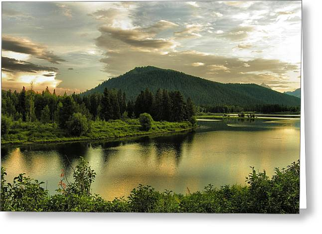 Oxen Framed Prints Greeting Cards - Late Afternoon on the Snake River  Greeting Card by Steven Ainsworth