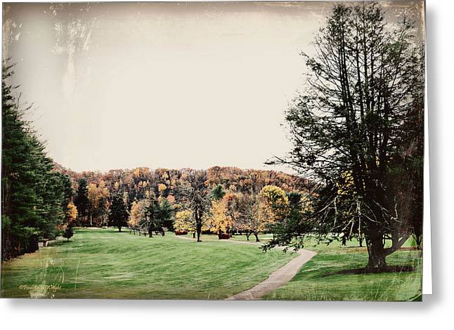 Late Fall In Waynesville Greeting Card by Paulette B Wright