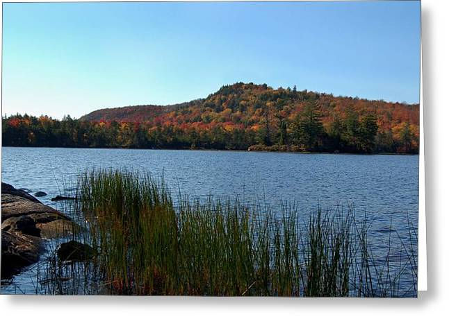 Fall Scenes Greeting Cards - Late Fall on Lake Lila Greeting Card by Peter DeFina