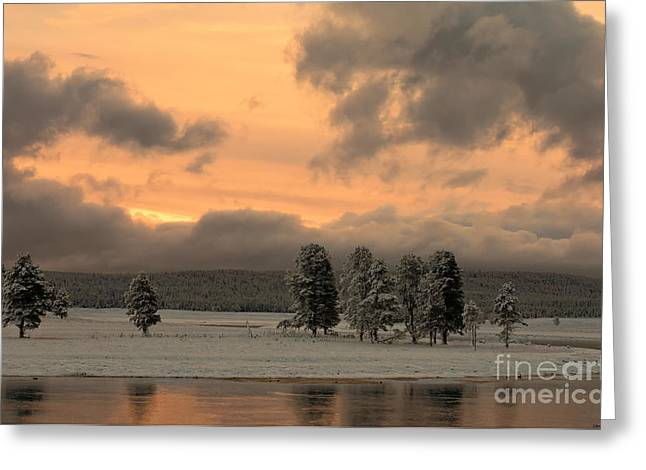 Late Spring Storm In Yellowstone Greeting Card by Sandra Bronstein