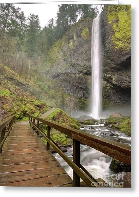 Moss Greeting Cards - Latourell Falls Waterfall and Bridge Columbia River Gorge Oregon Greeting Card by Dustin K Ryan