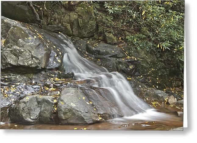 Laurel Falls 6230 Greeting Card by Michael Peychich