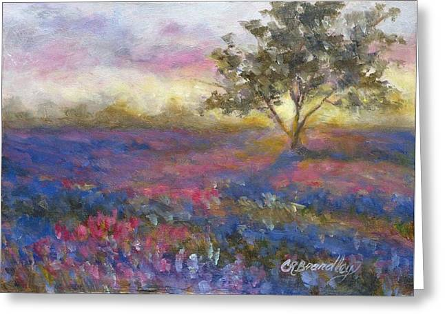 Mini Paintings Greeting Cards - Lavender at Sunset Greeting Card by Chris Brandley