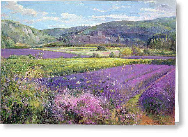 Purple Flowers Greeting Cards - Lavender Fields in Old Provence Greeting Card by Timothy Easton