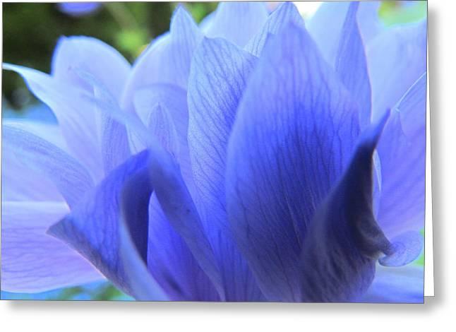 Layers Of Blue Greeting Card by Eva Kondzialkiewicz