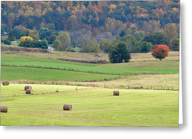 Tennessee Hay Bales Greeting Cards - Layers Of Fields Greeting Card by Jan Amiss Photography
