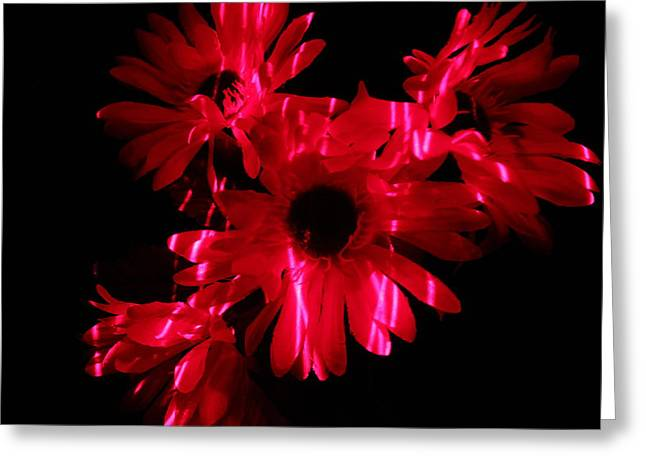 Iphonesia Greeting Cards - Lazerlight Floral Greeting Card by Mickey Hatt