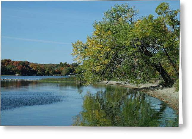 Lazy Fall Tree Over Glassy Lake Greeting Card by Brian  Maloney