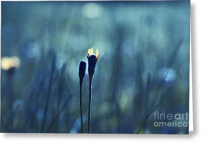 Impressionist Photography Greeting Cards - Le Centre de l Attention - BLUE s0203d Greeting Card by Variance Collections