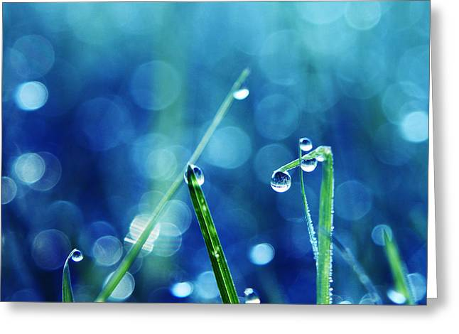 Water Droplets Greeting Cards - Le Reveil - s01a Greeting Card by Variance Collections