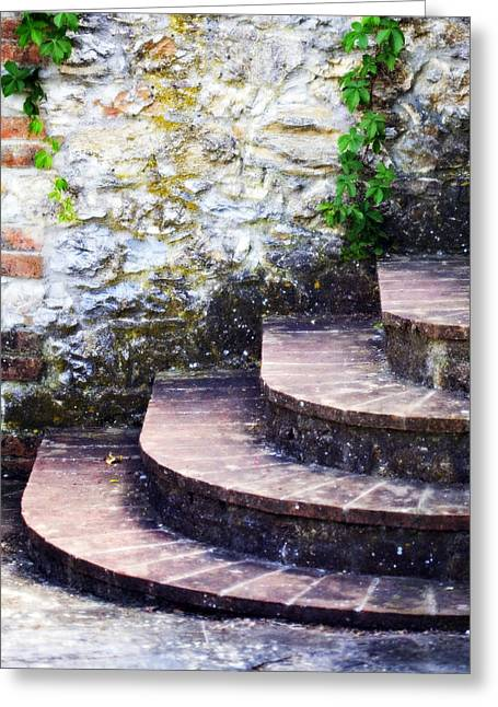 Lead Greeting Cards - Lead the Way Greeting Card by Marilyn Hunt